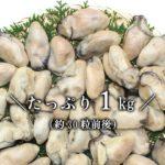 【冷凍牡蠣】カキは冷凍のほうが美味しい!?ジャンボ牡蠣を通販で!